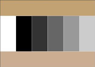 Какой цвет сочетается с серым на авто