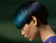 GOLDWELL Color Zoom'12 - Коллекция...