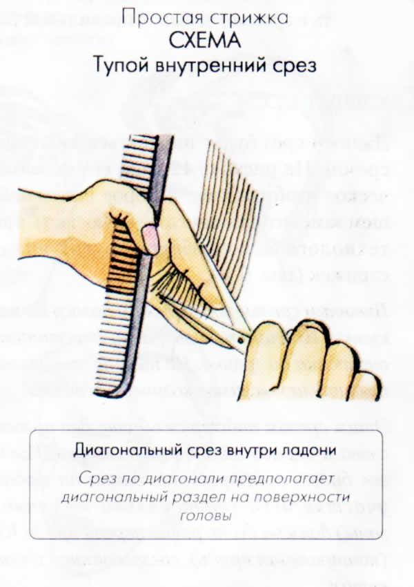 внутренний срез Простая стрижка