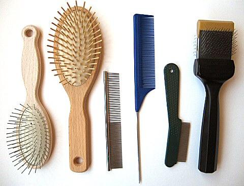 Как выбрать лучшую расческу для волос