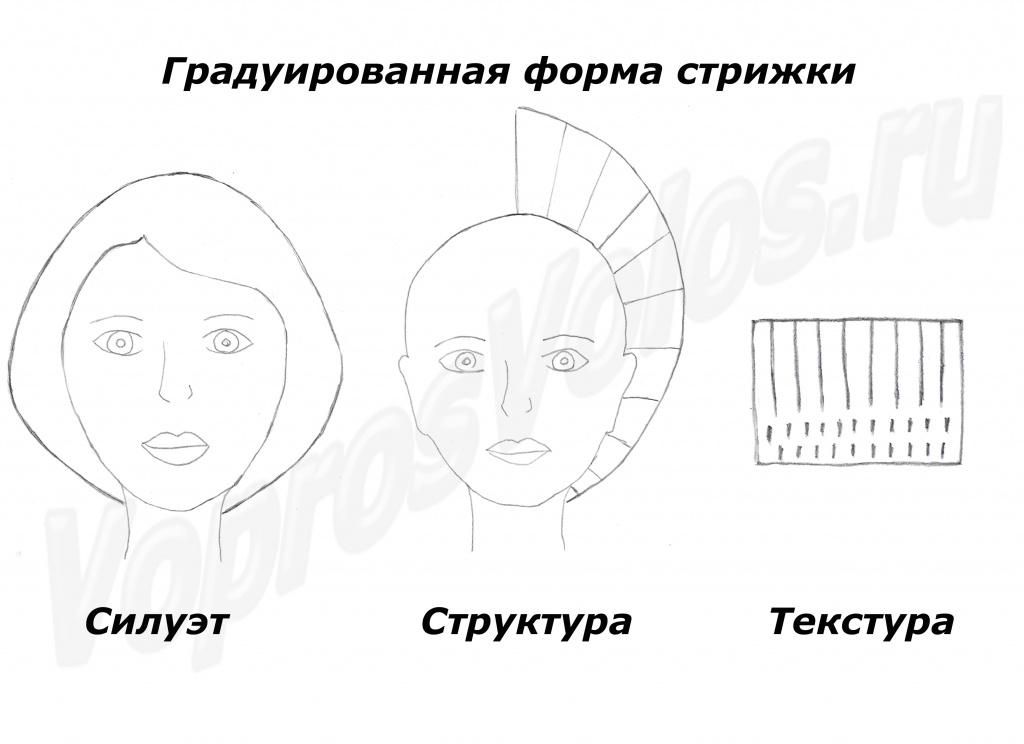 4 основные формы прически